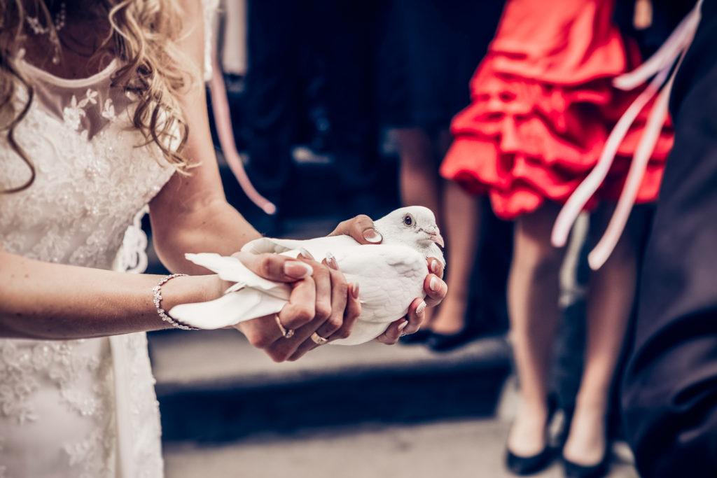 Hochzeit_ElliOllii-269