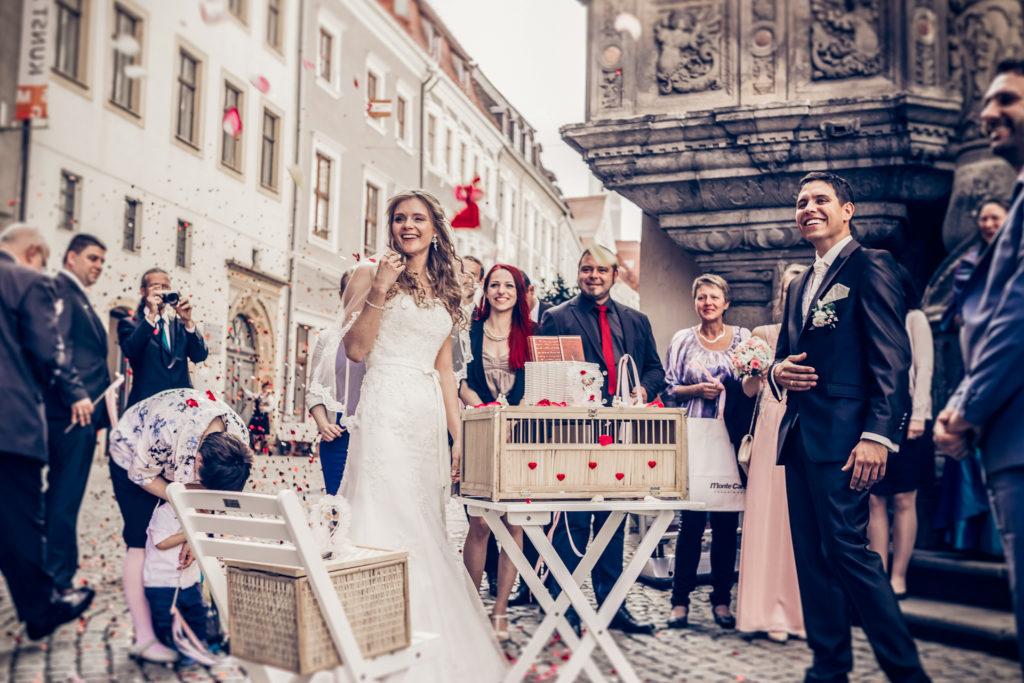 Hochzeit_ElliOllii-294