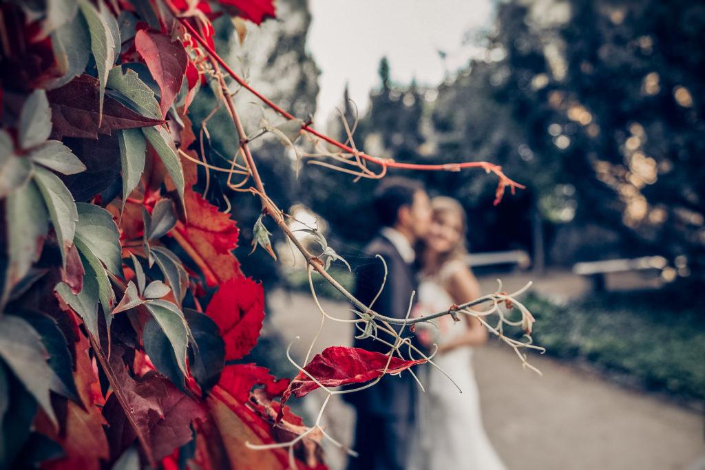 Hochzeit_ElliOllii-432