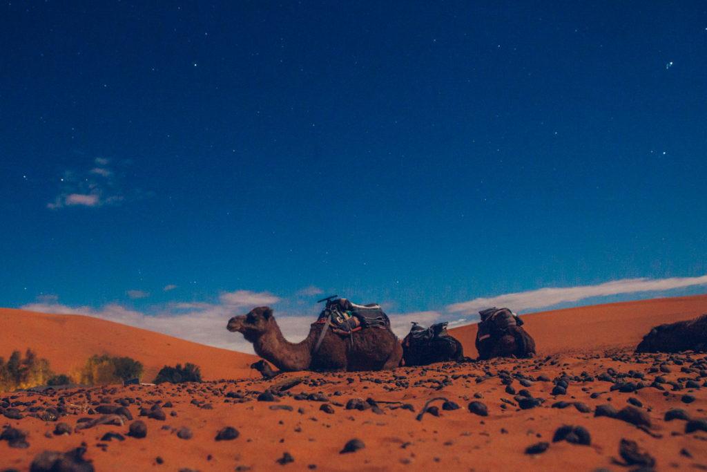 Marokko 2 Jessica Grossmann-4437