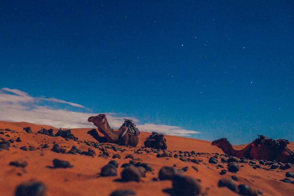 Marokko 2 Jessica Grossmann-4446