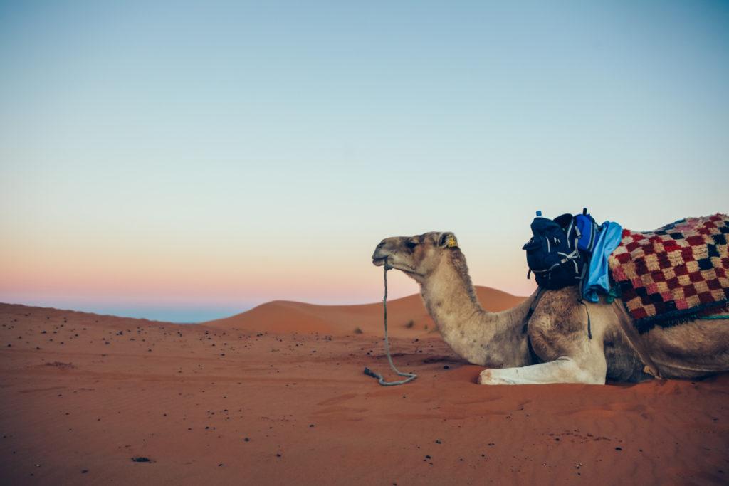 Marokko 2 Jessica Grossmann-4508