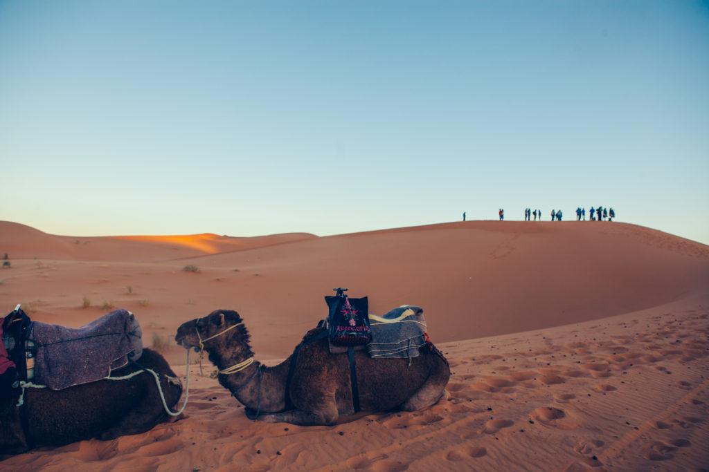 Marokko 2 Jessica Grossmann-4515