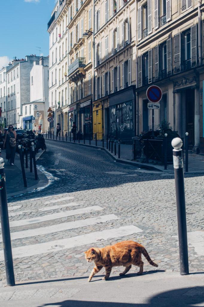 paris-blog-3554
